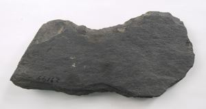 Image of Blank Bannerstone