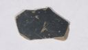 Image of Etruscan-Campanian Black-Gloss Patera (Plate) Fragment
