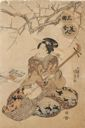 Image of Beauty Playing a Shamisen Musical Instrument, from the series Sankyoku Bijin Awase (Beauties of the Three Instruments)