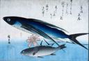Image of Flying Fish, Ishimochi, and Lily, from an untitled series known as Large Fish