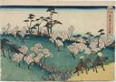 Image of Cherry-blossom Viewing at Asuka Hill (Asukayama hanami), from the series Famous Places in Edo (Kôto meisho).